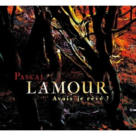 CD DVD PASCAL LAMOUR - AVAIS-JE RÊVE ?