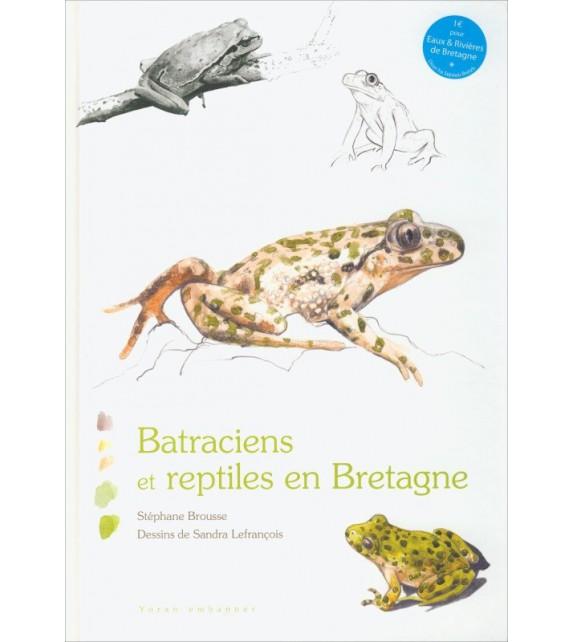 BATRACIENS ET REPTILES DE BRETAGNE