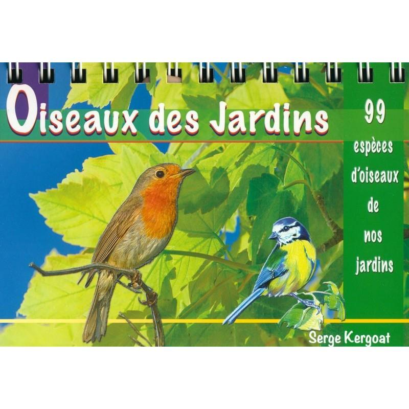 Oiseaux des jardins for Photos oiseaux des jardins