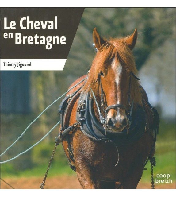 LE CHEVAL EN BRETAGNE