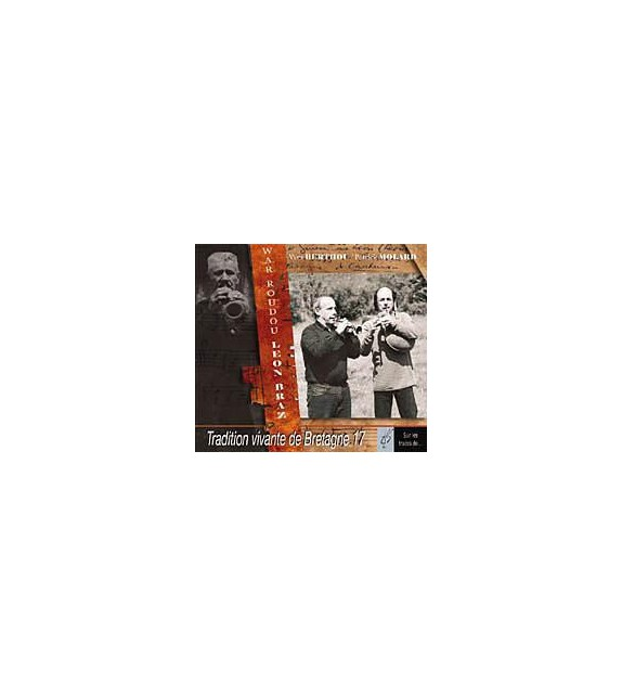 CD PATRICK MOLARD ET YVES BERTHOU - Tradition vivante de bretagne 17