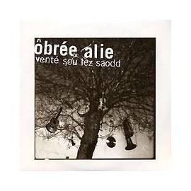 CD BERTRAN OBREE - VENTE SOU LEZ SAODD
