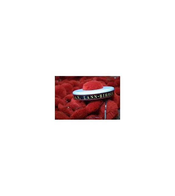 CD BAGAD DE LANN BIHOUE - 55 ANS