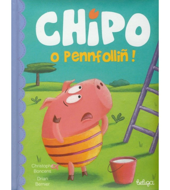 CHIPO O PENNFOLLIÑ ! (version en breton)