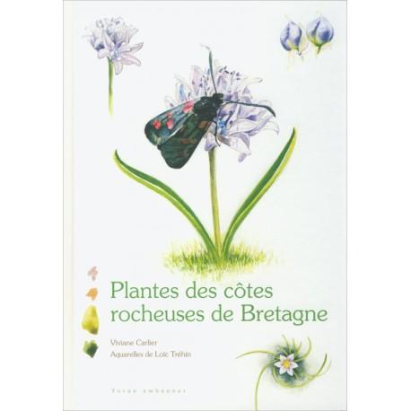 PLANTES DES CÔTES ROCHEUSES DE BRETAGNE