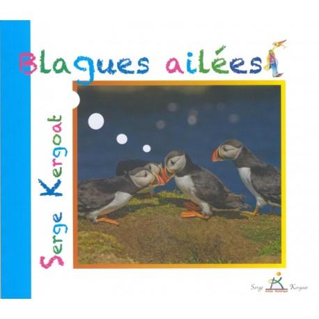 BLAGUES AILÉES