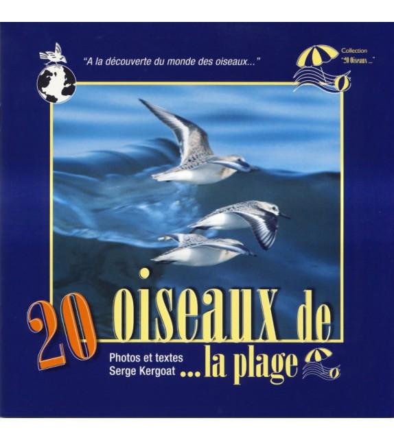 20 OISEAUX DE PLAGE