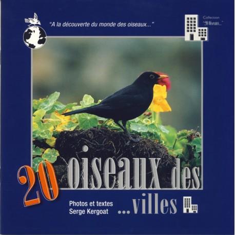 20 OISEAUX DE VILLE