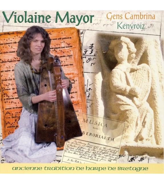 CD VIOLAINE MAYOR - GENS CAMBRINA, KENVROIZ