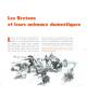 LES ANIMAUX DES BRETONS - Un patrimoine préservé
