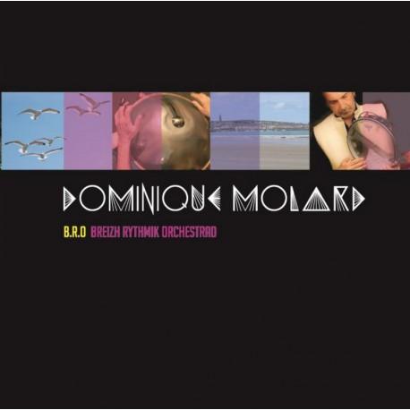 CD DOMINIQUE MOLARD - BREIZH RYTHMIK ORCHESTRA - PARUTION JUILLET 2017