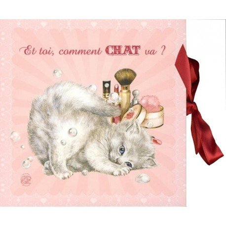 COFFRET COURRIER CHAT (908957)