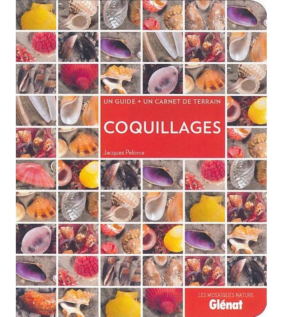 COQUILLAGES - Un guide + un carnet de terrain