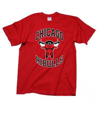 TEE SHIRT CHICAGO RIBULLS - tee-shirt breton