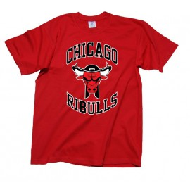 TEE SHIRT CHICAGO RIBULLS - tee-shirt breton