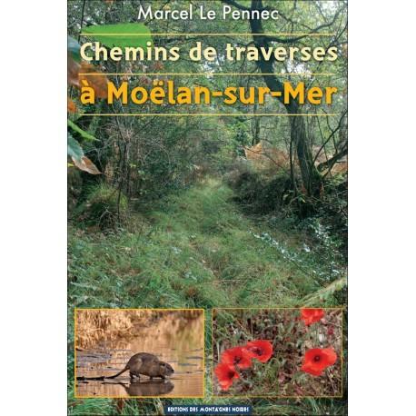 CHEMINS DE TRAVERSES À MOËLAN-SUR-MER