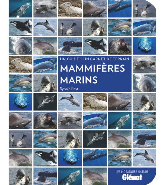 MAMMIFÈRES MARINS (Un guide + un carnet de terrain)