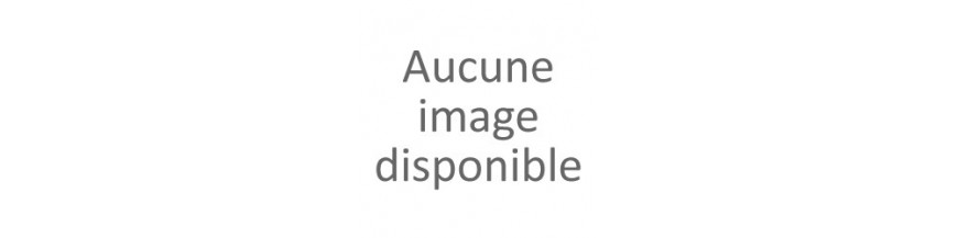 BREIZH - Histoire de la Bretagne en BD